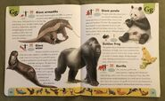 Endangered Animals Dictionary (9)