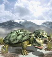 Giant Tortoise ZT