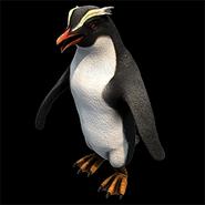 Penguin aoe2DE