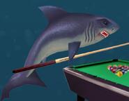 SML Shark-02