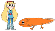 Star meets Axolotl