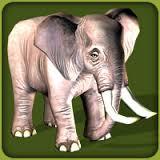 African Elephant (Zoo Tycoon 2)