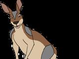 Aussie the Kangaroo