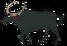 Tuck the Wild Water Buffalo