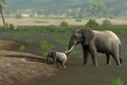 Afrika elephant i by linconnu24-d38wwr1