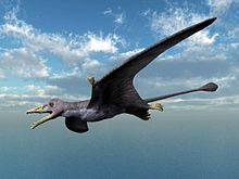 Eudimorphodon NT small