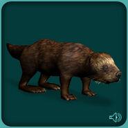 Sea Otter (Blue Fang)