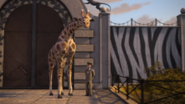 TTTE Giraffe