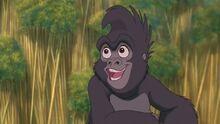 Terk (Tarzan)