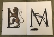 Animal Alphabet (Bert Kitchen) (7)