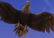 Garfield Eagle