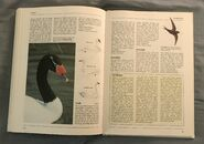 The Kingfisher Illustrated Encyclopedia of Animals (158)