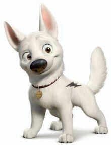 Bolt profile