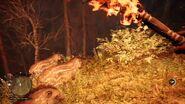 Far Cry Primal Tapirs