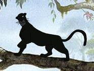 Rileys Adventures Asiatic Black Leopard