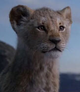 Young Simba in The Lion King (2019)