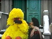 Big Bird crying over Snuffy's absence
