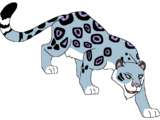 Seerrja the Snow Leopard