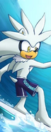 Silver the Hedgehog's trunks