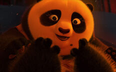 Po's Mother