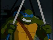 2509306-turtle277