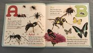 Bugs A-Z (1)