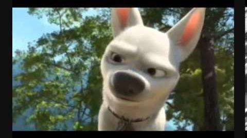 """,,The Superdog of Notre Dame."""" - trailer"""