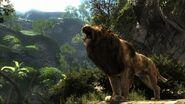 2330519-cabelas dh 2013 lion