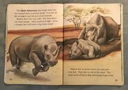 Awesome Animals (Road to Reading) (12)