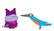 Chowder meets Common Kingfisher