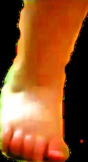 IMG 5271