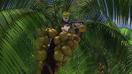 Madagascar-disneyscreencaps.com-7650