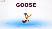 MagicBox Goose