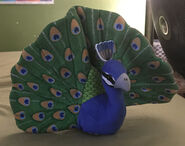 Paul the Peacock