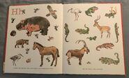8- An Animal Alphabet (5)