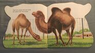 The Zoo Book (3)