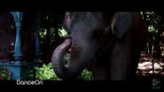 Zookeeper 2011 Elephant