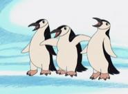 G,D,D! Christianap Penguins