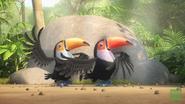 JungleBunch Toucan