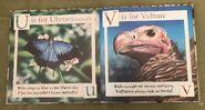 Gary Fleming's Wild Animals ABC (10)