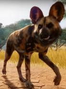 Planet Zoo Wild Dog