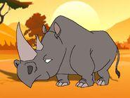 Rileys Adventures South Central Black Rhinoceros