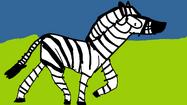 Scream the Plains Zebra