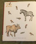 8- An Animal Alphabet (14)