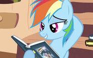 Rainbow Dash (Interview)