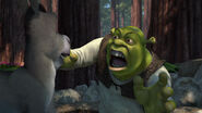 Shrek-disneyscreencaps.com-797