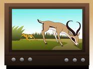 Parker's children love watching the animal documentaries on TV