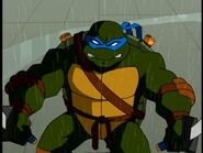 The-2509309-turtle285