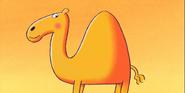 64 Zoo Lane Camel
