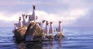 Disney problems finding-nemo seagulls